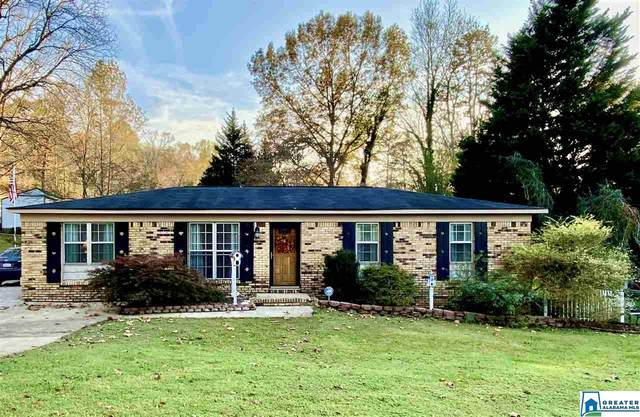 5147 Terry Heights Rd, Pinson, AL 35126 (MLS #901303) :: LocAL Realty