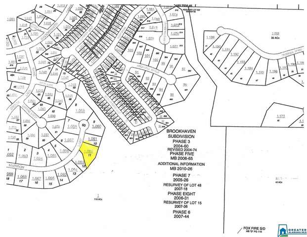 0 Madison Ln Lot #11, Odenville, AL 35120 (MLS #901482) :: LocAL Realty
