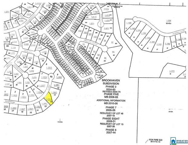 0 Madison Ln Lot #12, Odenville, AL 35120 (MLS #901483) :: Josh Vernon Group