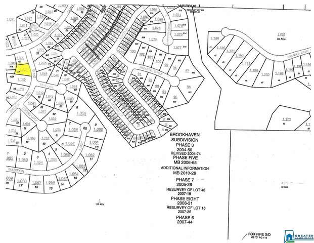 0 Brookhaven Ln Lot #47, Odenville, AL 35120 (MLS #901484) :: Josh Vernon Group