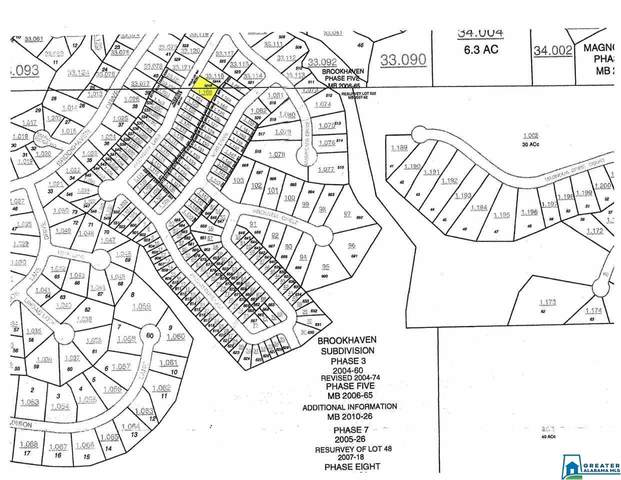 235 Hathaway Ln Lot #524B, Odenville, AL 35120 (MLS #901487) :: LocAL Realty