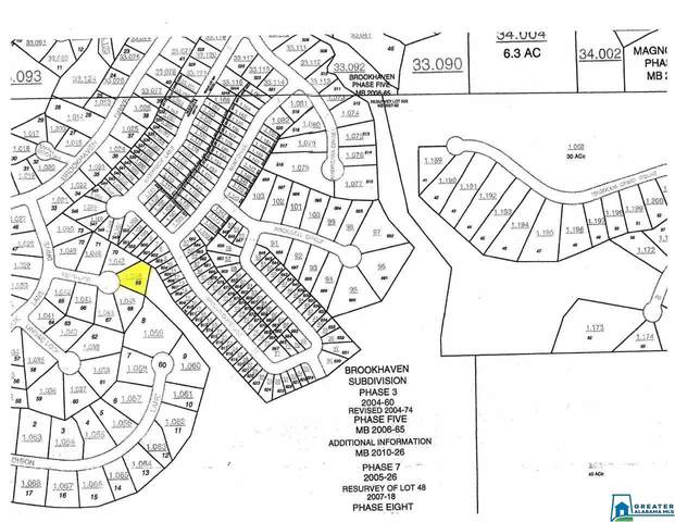 0 Terri Ln Lot #69, Odenville, AL 35120 (MLS #901488) :: LocAL Realty