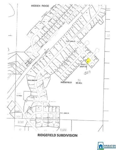 60 Ridgefield Ln Lot #507, Margaret, AL 35120 (MLS #901556) :: Sargent McDonald Team