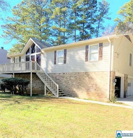 5428 Old Springville Rd, Pinson, AL 35126 (MLS #901697) :: LocAL Realty