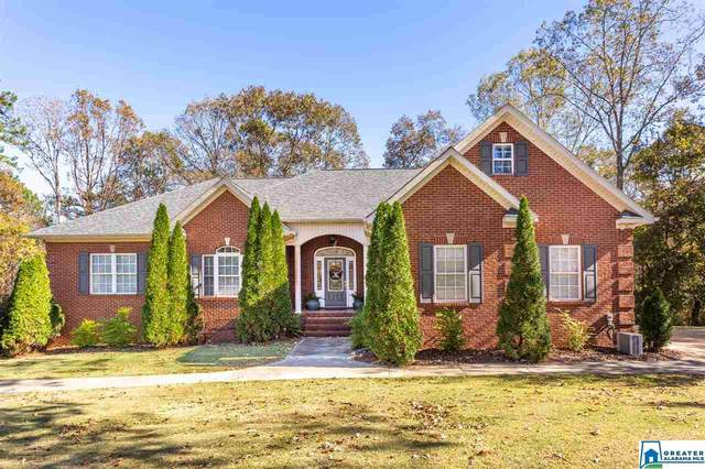 305 Patches Ln, Pell City, AL 35128 (MLS #901824) :: LocAL Realty