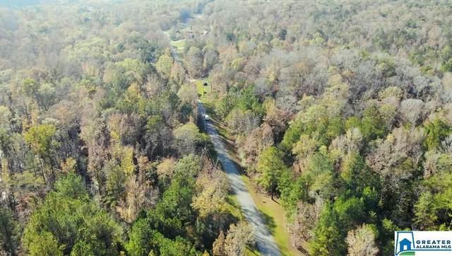 4537 Deer Creek Trl #0, Bessemer, AL 35022 (MLS #901854) :: Sargent McDonald Team