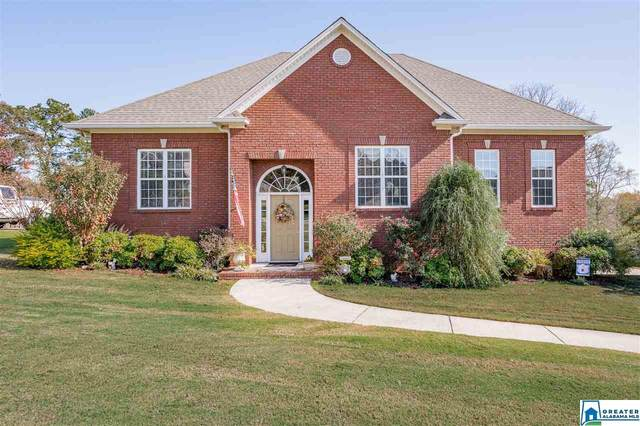 130 Smithfield Ln, Springville, AL 35146 (MLS #901889) :: Gusty Gulas Group