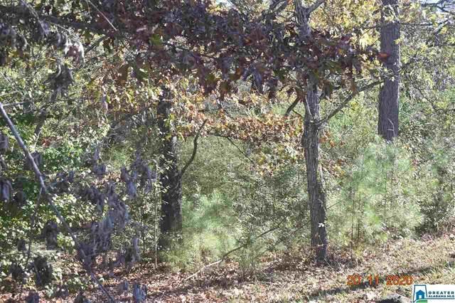 6476 Kimberly Loop #132, Pinson, AL 35126 (MLS #901907) :: JWRE Powered by JPAR Coast & County