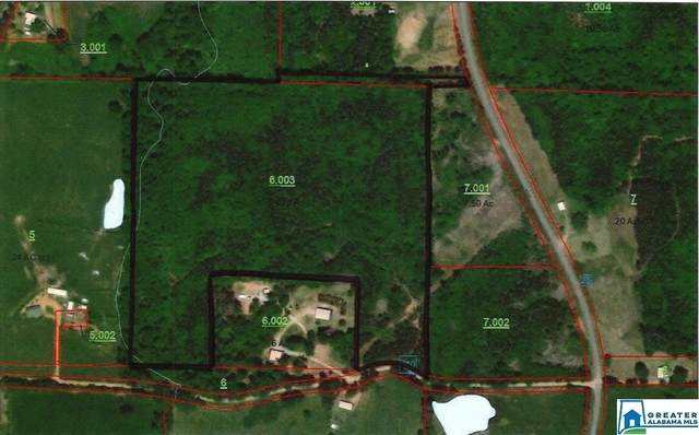 Co Rd 25 34 Acres, Newell, AL 36280 (MLS #901933) :: Josh Vernon Group