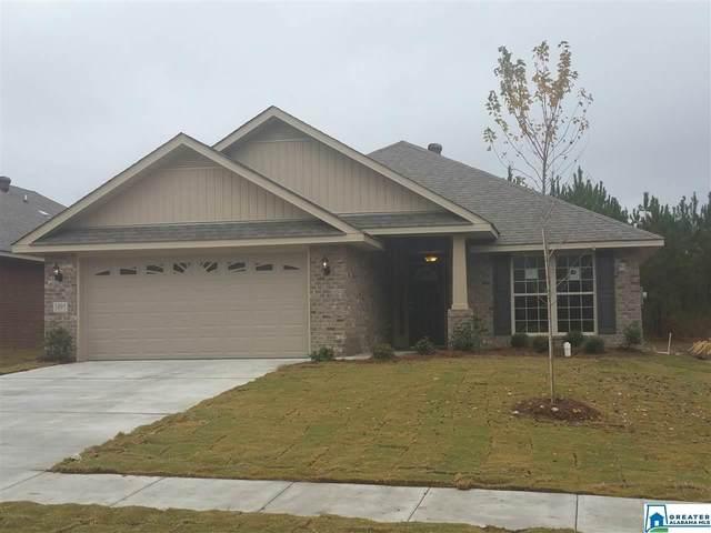 264 Black Creek Trl, Margaret, AL 35120 (MLS #902000) :: Josh Vernon Group