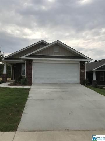 211 Black Creek Trl, Odenville, AL 35120 (MLS #902027) :: Josh Vernon Group