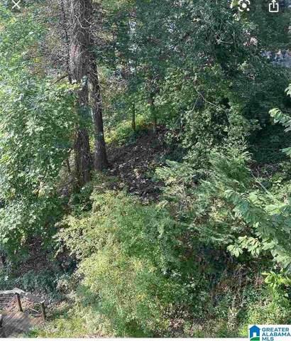 4046 Long Leaf Lake Trl #523, Helena, AL 35022 (MLS #1270580) :: LocAL Realty