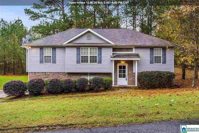 600 Magnolia Lake Ct, Odenville, AL 35120 (MLS #1270664) :: Gusty Gulas Group