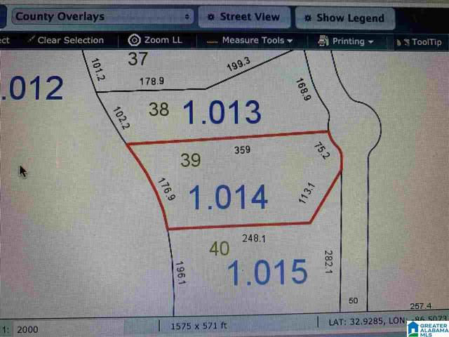 Lot - 39 Waters Dr #39, Clanton, AL 35046 (MLS #1271088) :: Bentley Drozdowicz Group