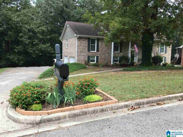 5714 Finch Rd, Clay, AL 35126 (MLS #1271094) :: Lux Home Group