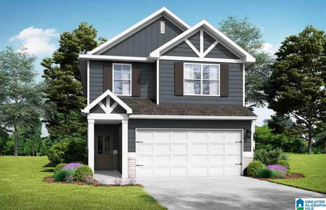 3446 Misty Hollow Dr, Bessemer, AL 35022 (MLS #1271752) :: Bailey Real Estate Group