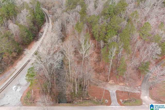 0 Roberts Mill Pond Road #84, Pell City, AL 35125 (MLS #1272392) :: Bentley Drozdowicz Group