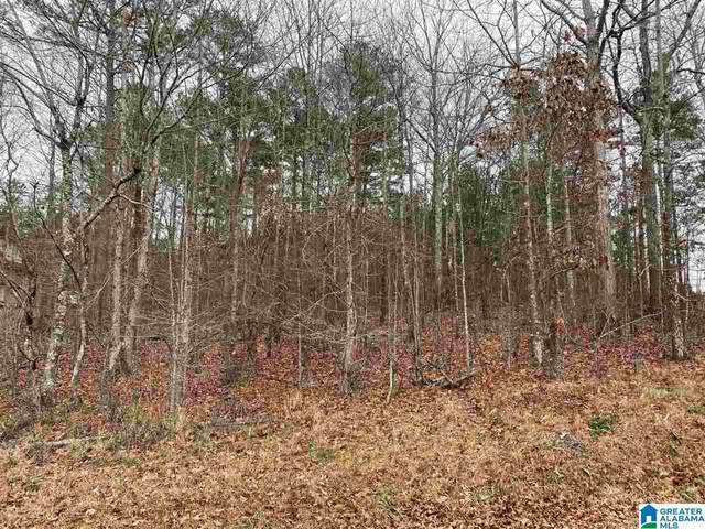 lot 65 Hayfield Loop #65, Dora, AL 35062 (MLS #1273399) :: LocAL Realty
