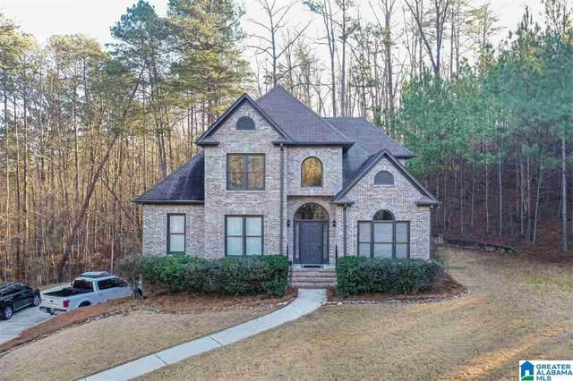 196 Sweet Gum Dr, Chelsea, AL 35043 (MLS #1273652) :: Bailey Real Estate Group