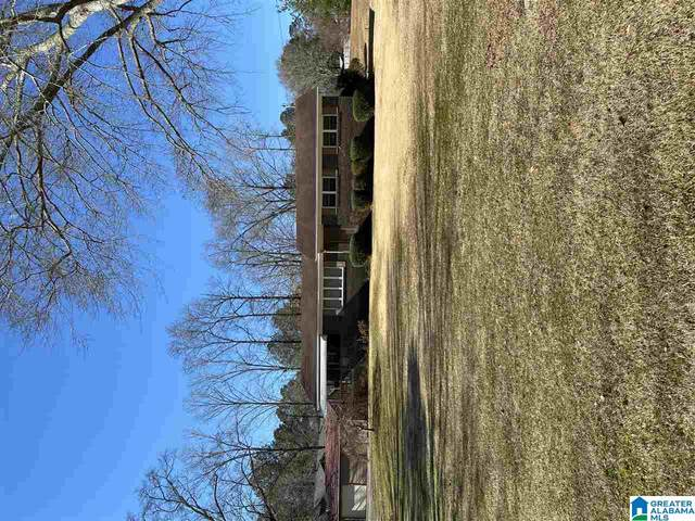 4341 Valley Ford Rd, Adger, AL 35006 (MLS #1273841) :: Lux Home Group