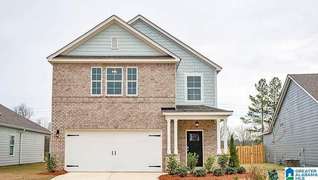 4028 Park Cove Way, Chelsea, AL 35043 (MLS #1273862) :: Bailey Real Estate Group