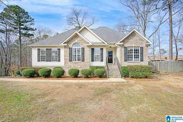 21033 Cora Lee Cir, Lakeview, AL 35111 (MLS #1274209) :: Gusty Gulas Group