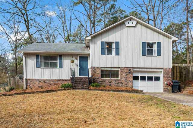 4736 Wine Ridge Ln, Birmingham, AL 35244 (MLS #1274237) :: JWRE Powered by JPAR Coast & County
