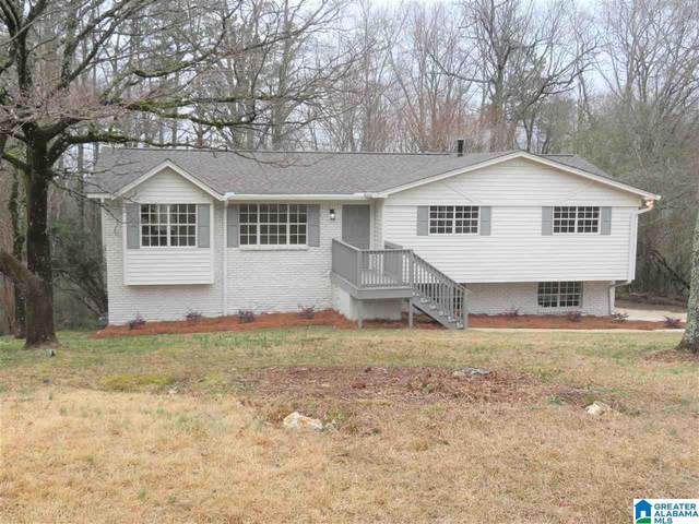 5410 White Oak Rd, Pinson, AL 35126 (MLS #1275757) :: Lux Home Group