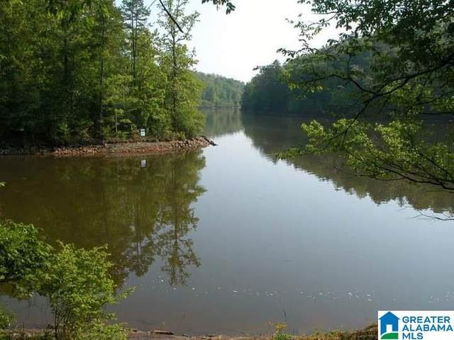 Lot 9 Lost Creek Cove Rd #9, Wedowee, AL 36278 (MLS #1276282) :: Howard Whatley