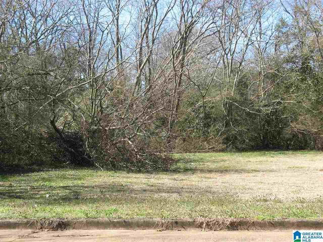 407 Nashville Ave #0, Sylacauga, AL 35150 (MLS #1276726) :: Lux Home Group