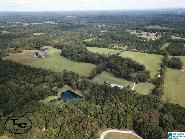 574 Blacksmith Lane, Wilsonville, AL 35186 (MLS #1278116) :: LocAL Realty