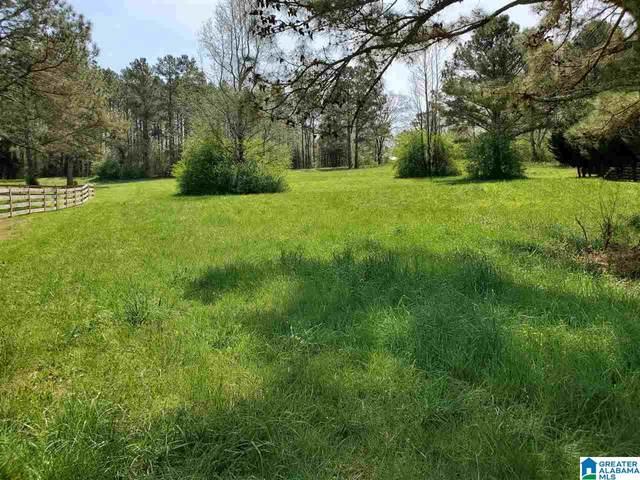 Village Trace Drive #25, Springville, AL 35146 (MLS #1279382) :: Lux Home Group