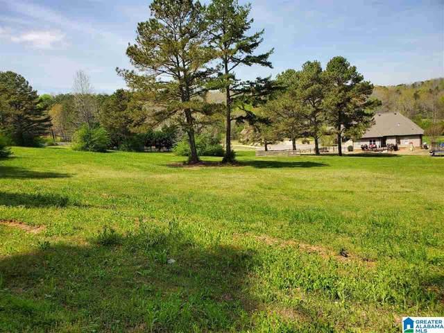 Village Springs Road #7, Springville, AL 35146 (MLS #1279391) :: Lux Home Group
