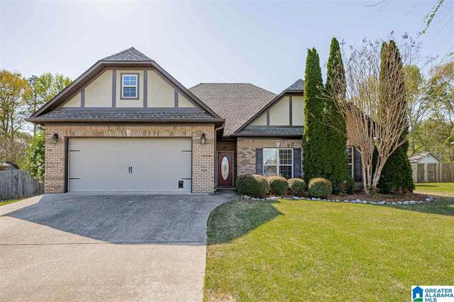 150 Gina Court, Odenville, AL 35120 (MLS #1280632) :: Bentley Drozdowicz Group