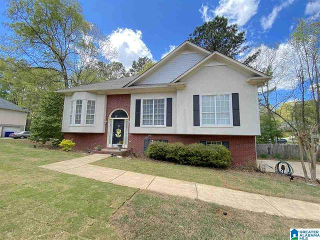 204 Brynleigh Circle, Chelsea, AL 35043 (MLS #1281359) :: Sargent McDonald Team