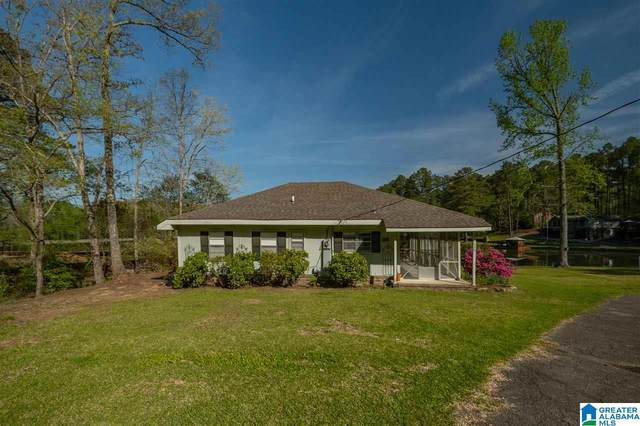 175 Mountain View Lake, Odenville, AL 35120 (MLS #1281430) :: Sargent McDonald Team