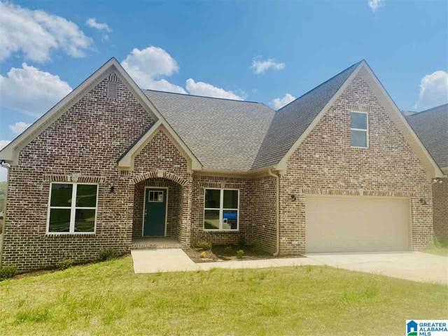 67 Briarwood Street, Springville, AL 35146 (MLS #1281468) :: Lux Home Group