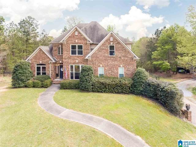 3001 Shadow Oaks Way, Wilsonville, AL 35051 (MLS #1281574) :: Sargent McDonald Team