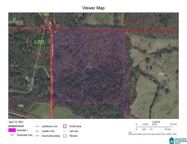 43 Acres Wills Farm Road 43 Acres, Lincoln, AL 35096 (MLS #1281704) :: LIST Birmingham