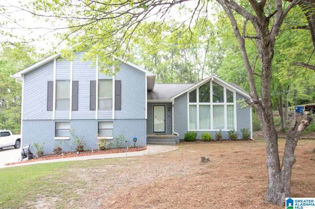 1106 Dearing Downs Drive, Helena, AL 35080 (MLS #1282086) :: LocAL Realty
