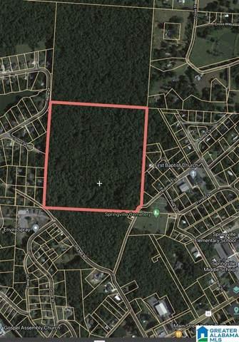 0 Robinson Street #1, Springville, AL 35146 (MLS #1283050) :: Sargent McDonald Team