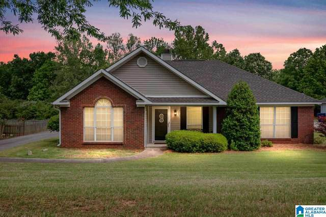 112 Star View Circle, Alabaster, AL 35007 (MLS #1283984) :: Sargent McDonald Team