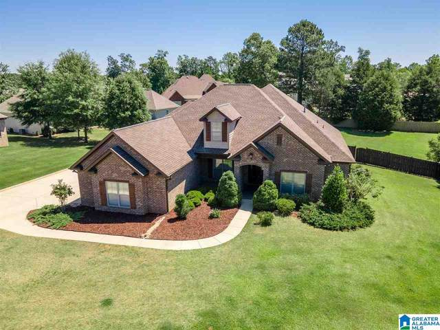 4395 River Bluff Circle, Tuscaloosa, AL 35406 (MLS #1284398) :: Krch Realty