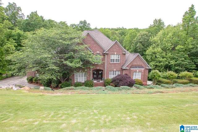 295 Fossil Rock Road, Springville, AL 35146 (MLS #1284639) :: LIST Birmingham
