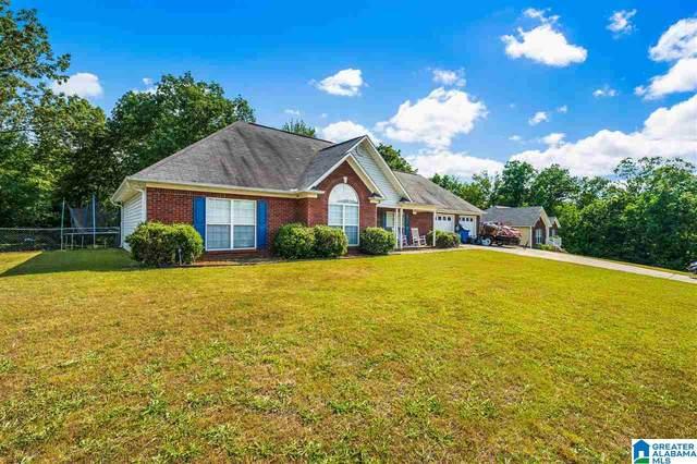 172 Oak Hill Drive, Remlap, AL 35133 (MLS #1285070) :: Amanda Howard Sotheby's International Realty
