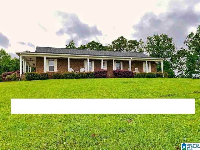9164 County Road 9, Clanton, AL 35045 (MLS #1285318) :: JWRE Powered by JPAR Coast & County