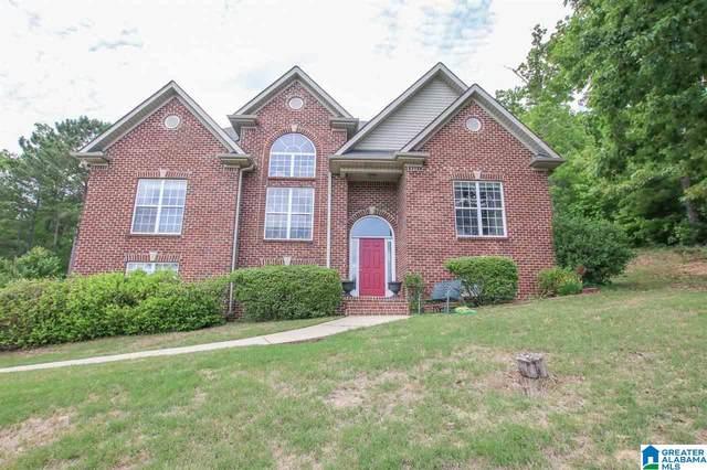 55 Pats Way, Springville, AL 35146 (MLS #1285881) :: Lux Home Group