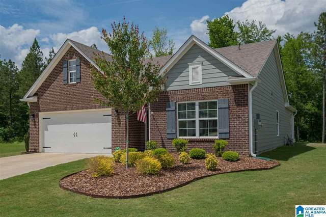 1080 Park View Drive, Chelsea, AL 35043 (MLS #1285906) :: LocAL Realty