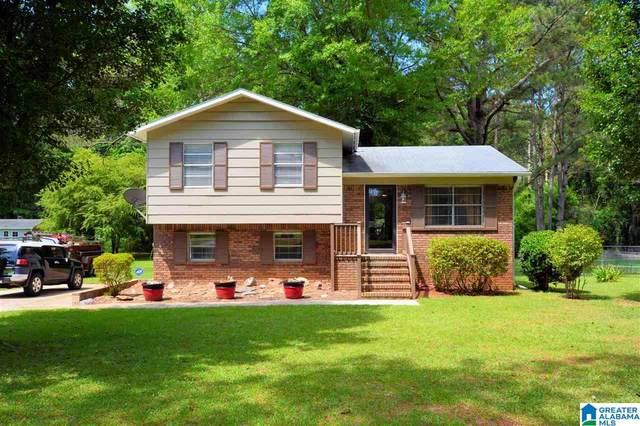 410 Highway 416, Wilsonville, AL 35186 (MLS #1286926) :: Lux Home Group