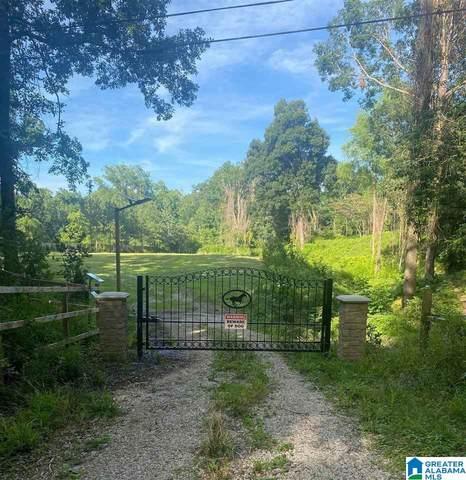 784 Cahaba River Estates #0, Hoover, AL 35244 (MLS #1287602) :: Sargent McDonald Team